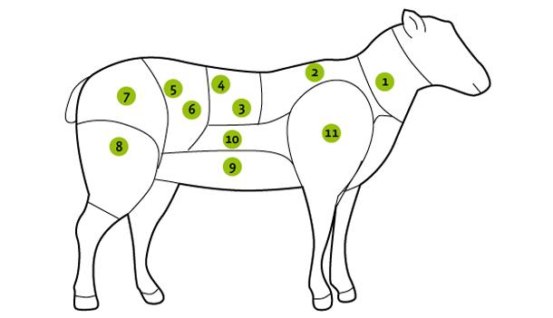 boucher_agneau